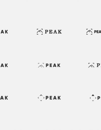 PeakVideoMockups2